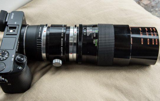 Altglas Teil 3/3: Vivitar Serie 1, 90 mm Makro
